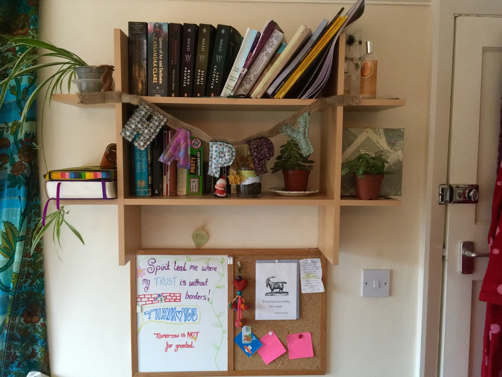 Micky shares her tips for creating a cosy solo living space in her small room within a house share.
