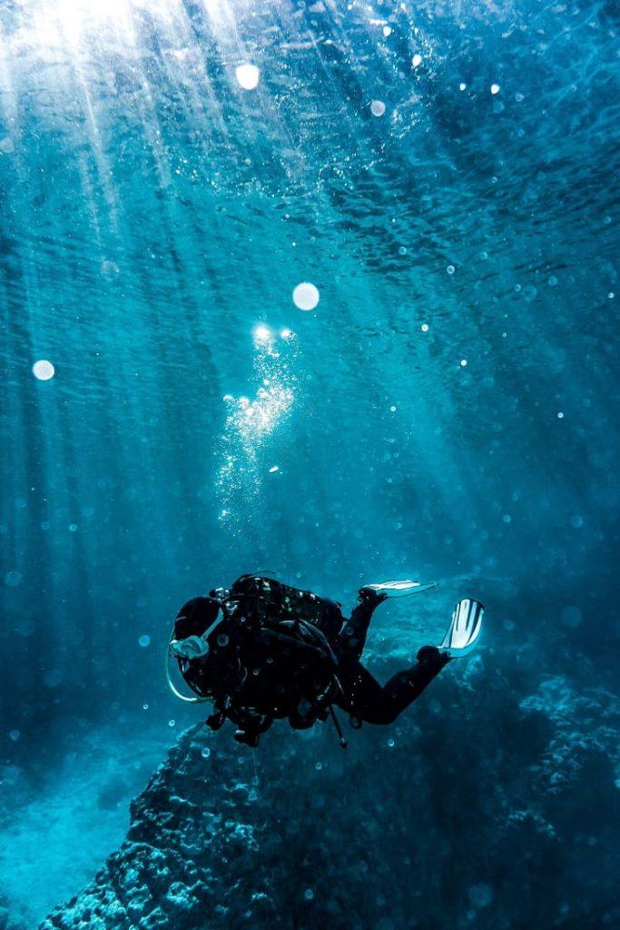 presente para aquário