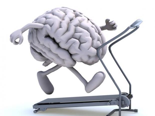 Diez alimentos que ayudan a pensar mejor - El cerebro, gran motor