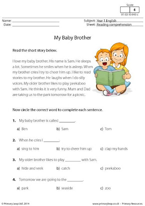The birth of my baby brother essay