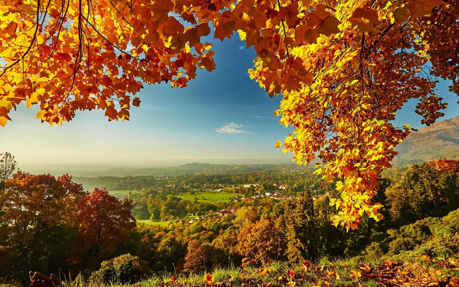 Le selfcare d'automne dans Idées et activités