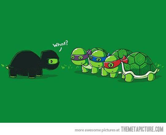 ninja funny.jpg