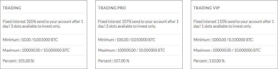 Обзор проекта Bitwealth Company: условия инвестирования и отзывы о компании