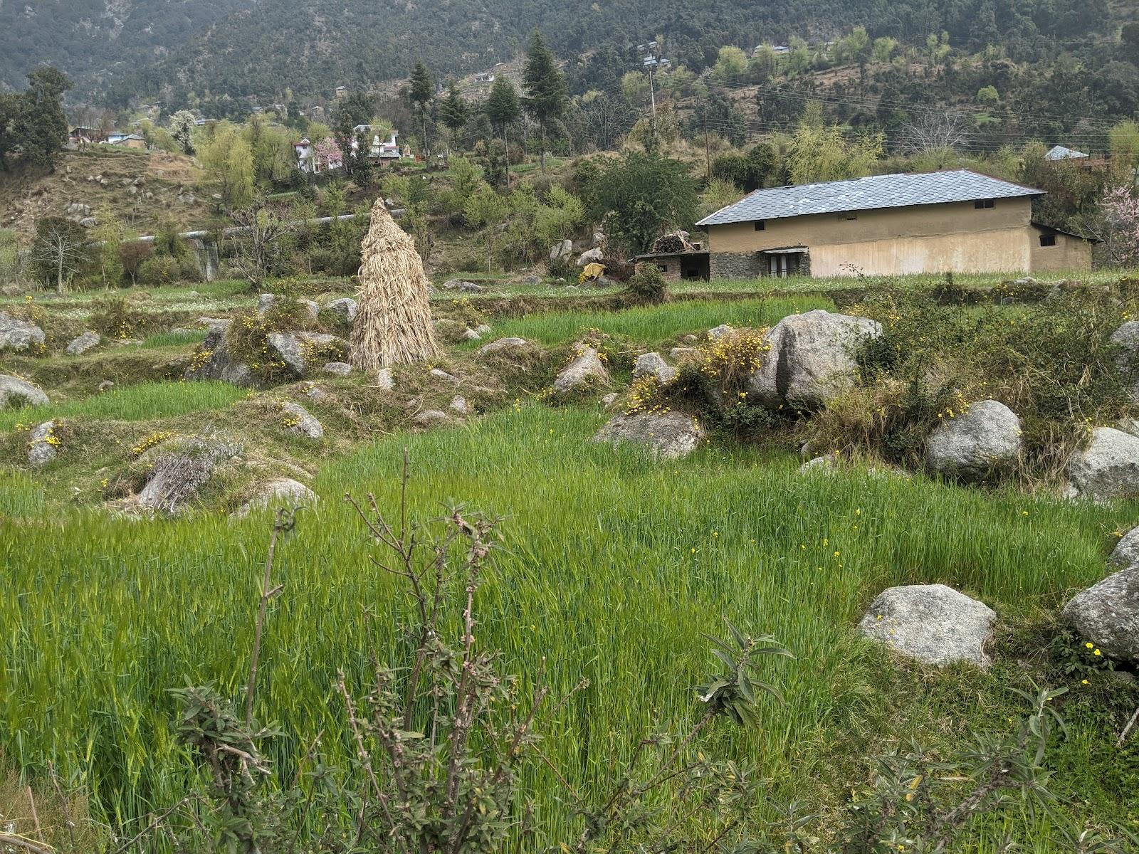 Salli-Valley