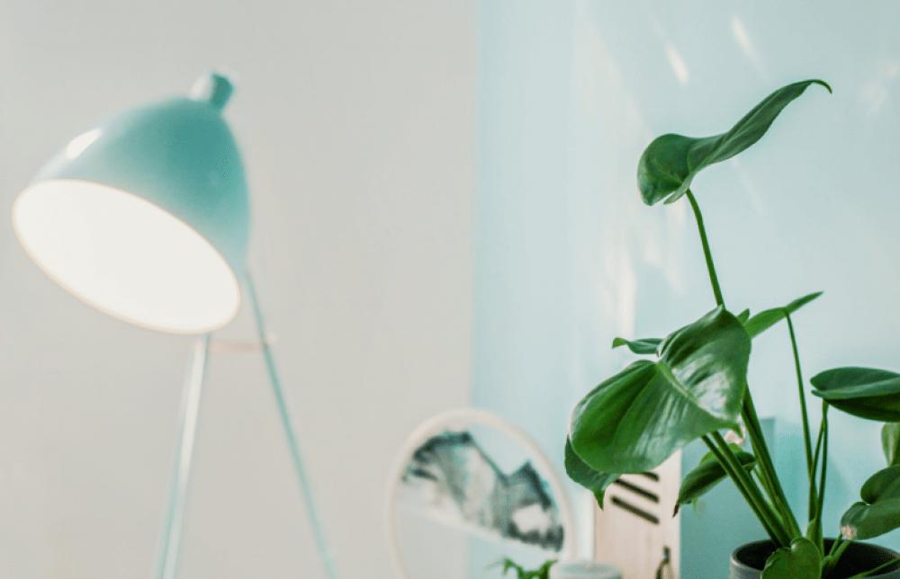 Lampu biru muda dengan hiasan tanaman