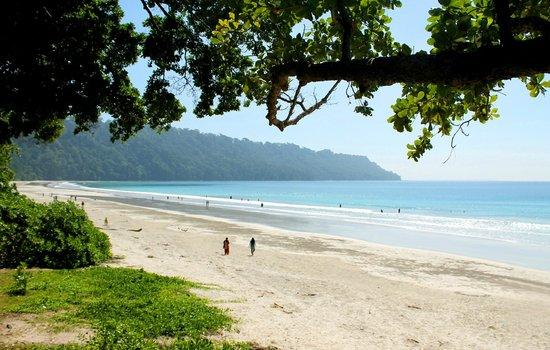 5) Lounge around at the Radhanagar Beach.jpg