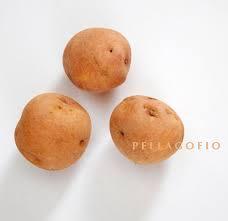 """Resultat d'imatges per a """"ojo de la patata"""""""