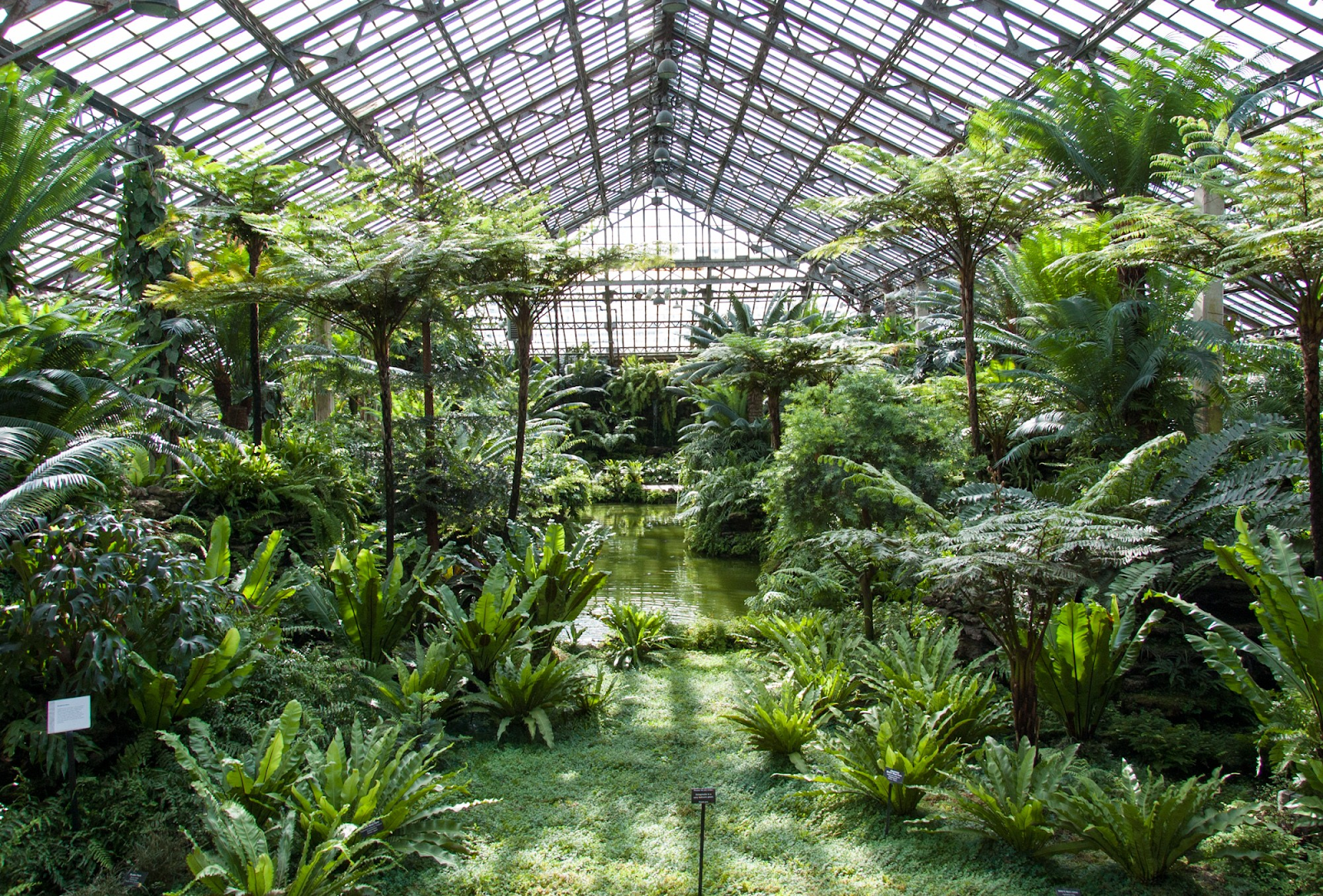 garfield park conservatory open house 2019