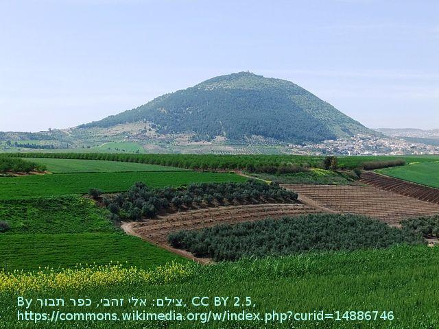 640px-PikiWiki_Israel_12379_Wadi_masha.png