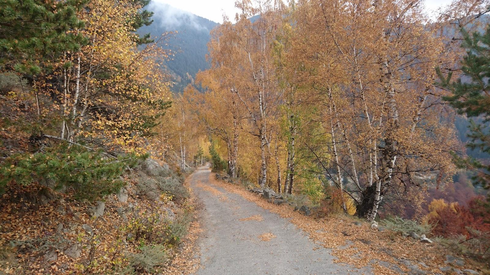 Fall colors on bicycle climb up Rila