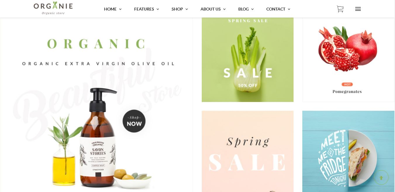 Fruits and vegetables magento theme organie