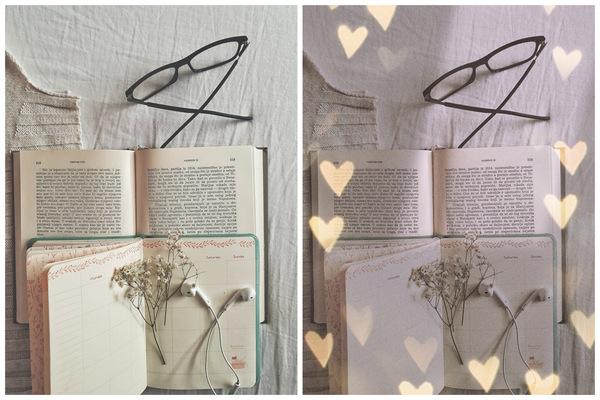 Vive la Journée du Livre : 2 suggestions de Photos pour un bon Lecteur!