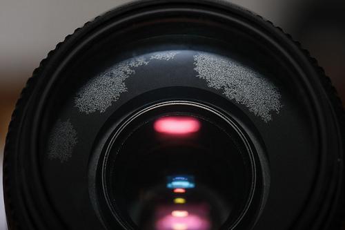 單眼 數位 底片 相機 鏡頭的正確保養方式與觀念