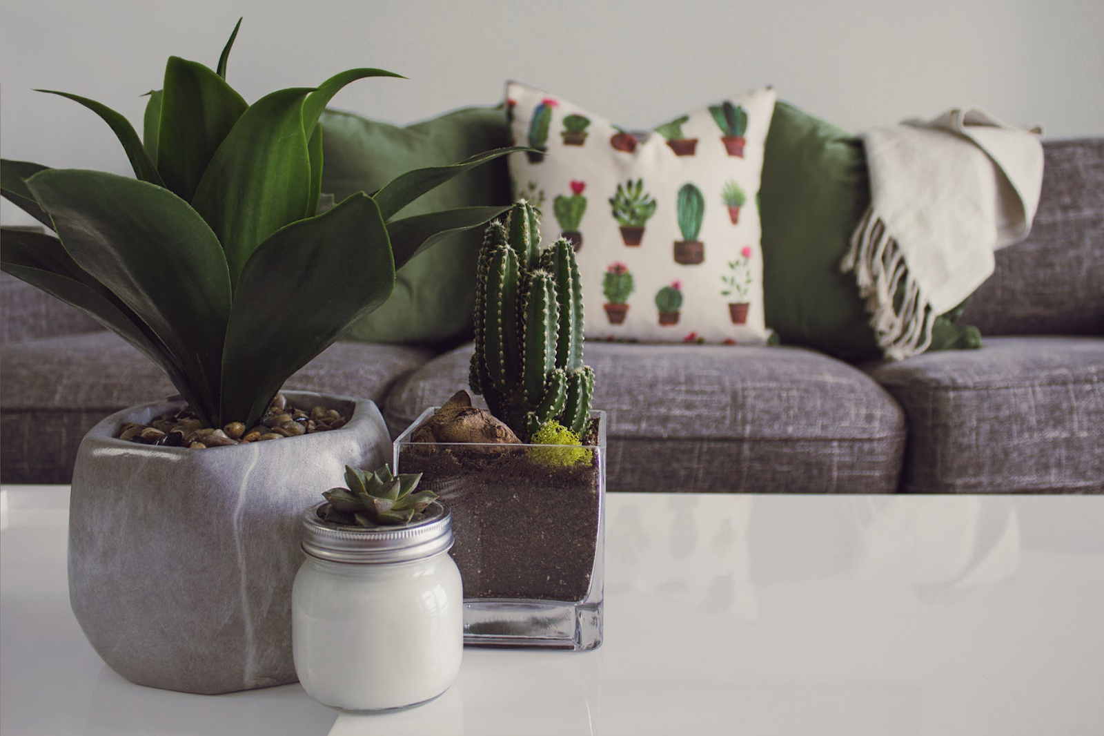 home decor ideas with greenery