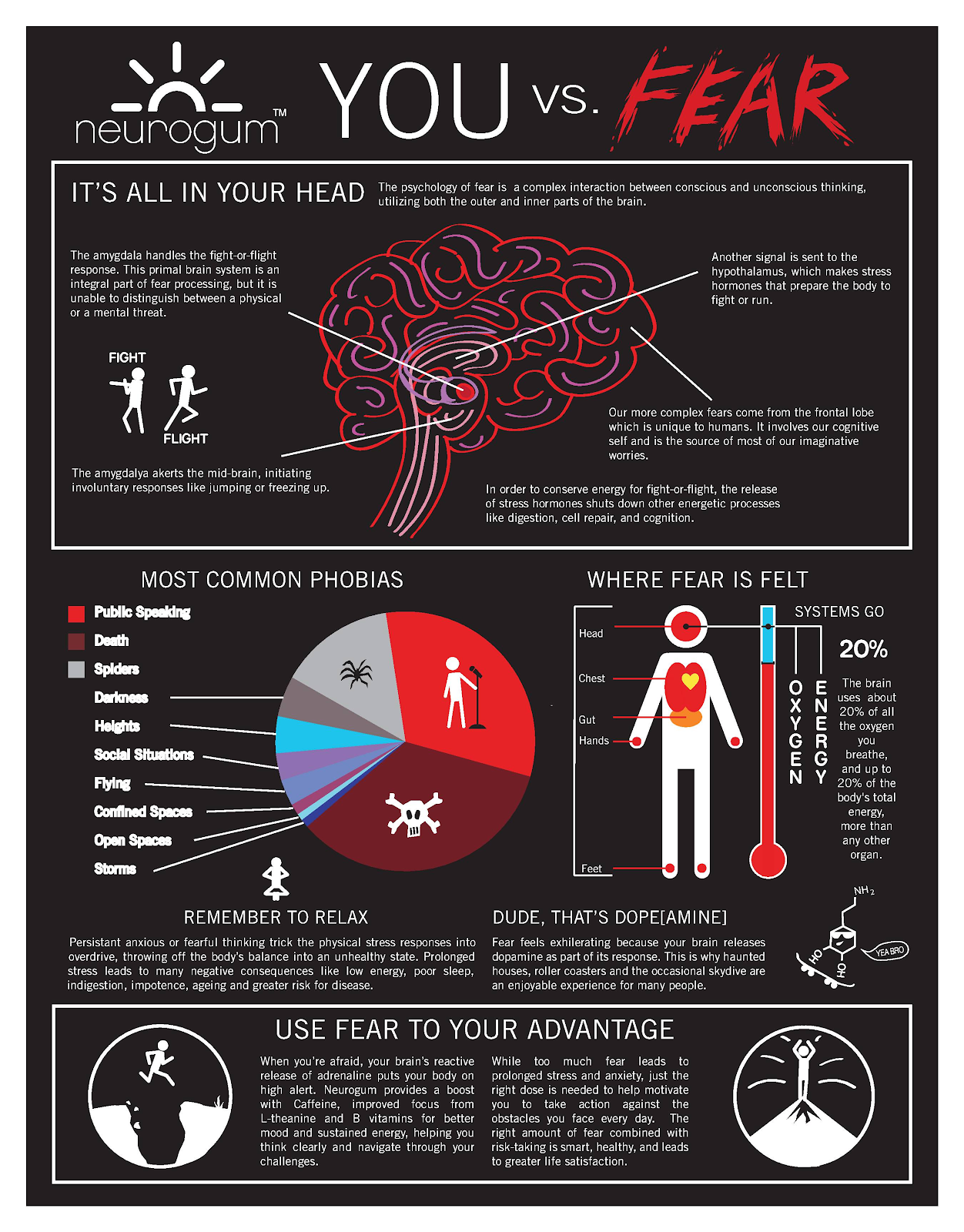 "Infographic titled ""You vs. Fear."" Shows that fear comes from your head and affects oxygen level."