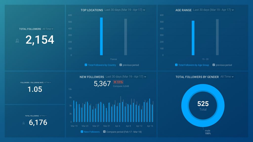Instagram Business (Audience Overview) dashboard