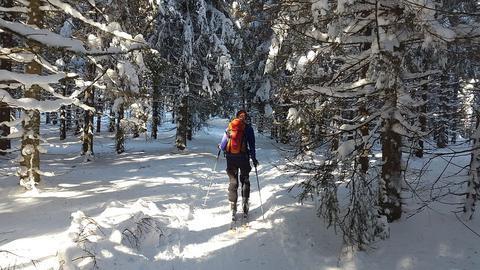 ski de randonnée et sécurité famille hiver