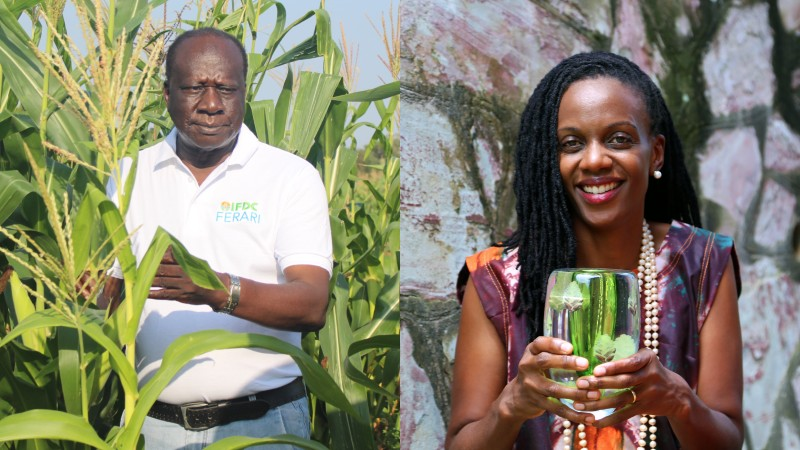 Remote sensing specialist and soil scientist win Africa Food Prize