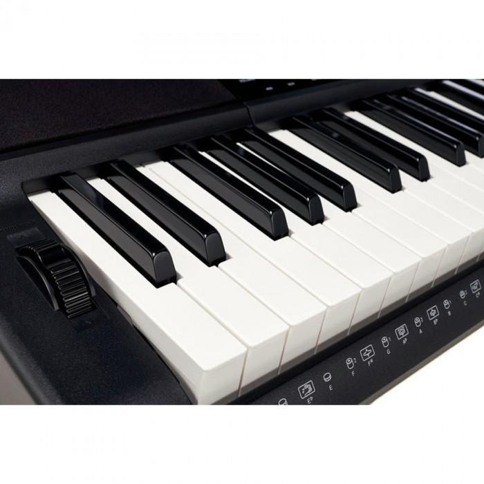 Casio CT-X800 và Roland E-X20A. Hai cây đàn keyboard này có khá nhiều điểm tương đồng và đều có mức giá khá dễ chịu chỉ dưới 7 triệu đồng