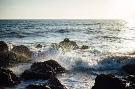 Image result for The rocky shore