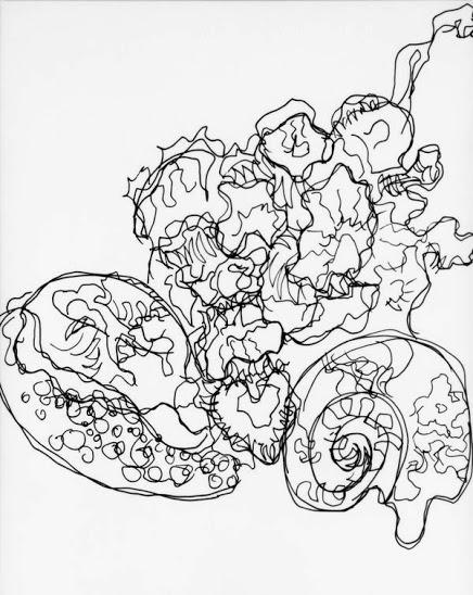 Blind Contour Line Drawing Hand : Westosha art blind contour