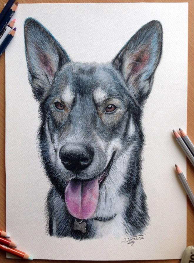 Por Amor Al Arte Hermosos Y Realistas Dibujos De Animales De Todo