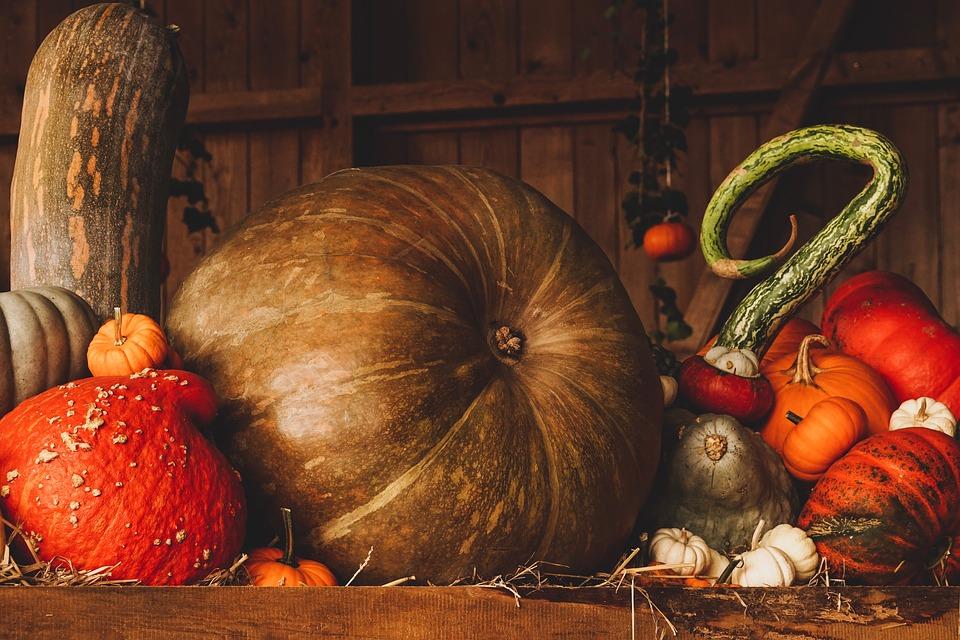 Courges et légumes d'hiver