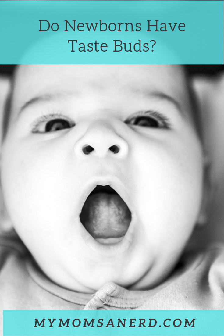 Do Newborns Have Taste Buds?