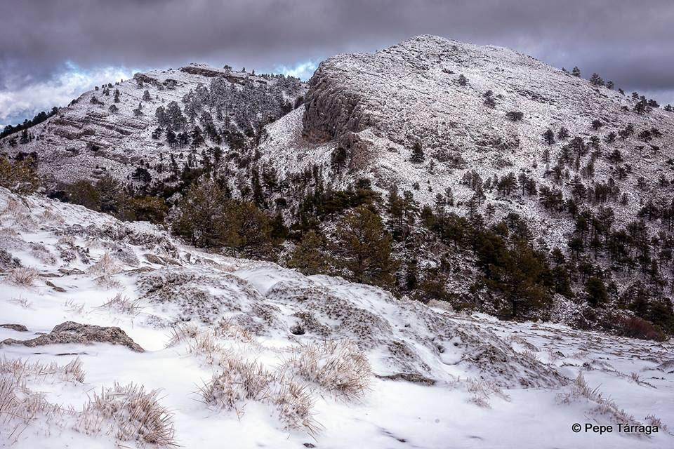 La imagen puede contener: cielo, montaña, árbol, nieve, nubes, exterior y naturaleza
