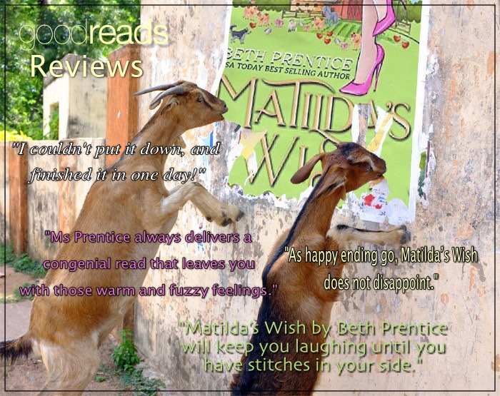 This image has an empty alt attribute; its file name is matildas-wish-reviews.jpg