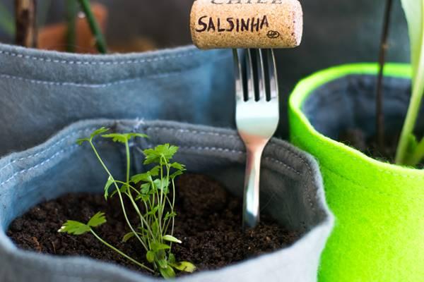 Temperos, ervas e condimentos cultivados em horta em casa.