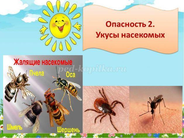 https://ped-kopilka.ru/upload/blogs2/2019/6/69554_a882cd8301897e1d79dda4990dae758f.jpg.jpg
