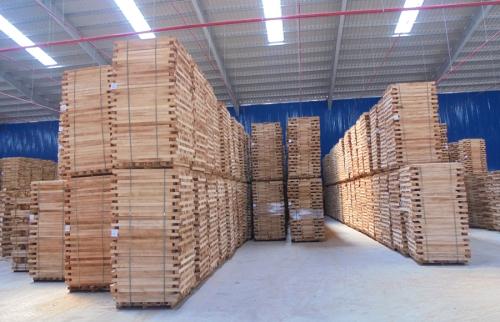 Phôi gỗ cao su được tin dùng nhất hiện nay