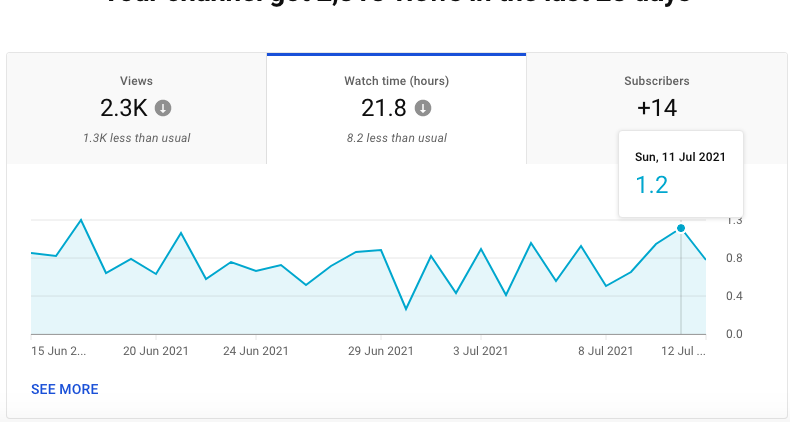 Watch time metrics