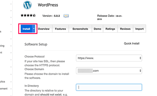 installing wordpress when creating a website in south africa