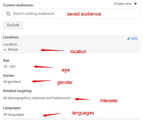 choosing facebook ads in kenya target audience