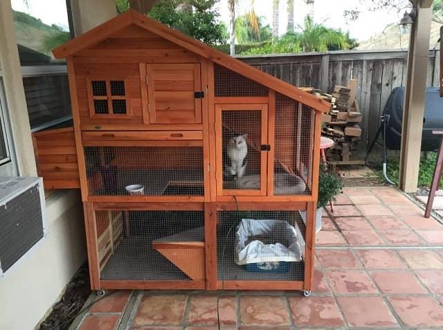 Diy Begini Cara Membuat Kandang Kucing Di Rumah