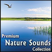Premium Nature Sounds Collection: Sounds of Nature for Sleeping & Relaxing