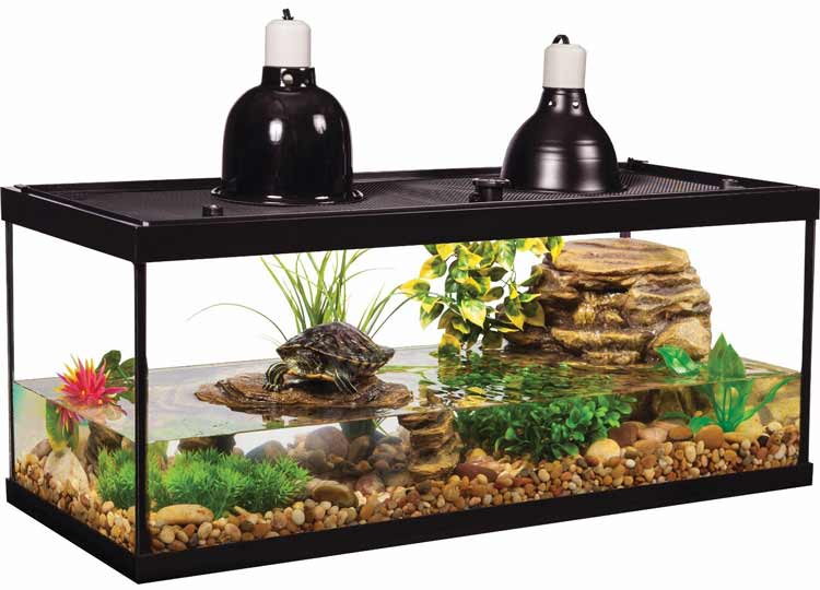 The Best 20 Gallon Turtle Tanks and Tank Kits | Turtle Owner