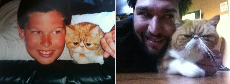 pets-before-after-19