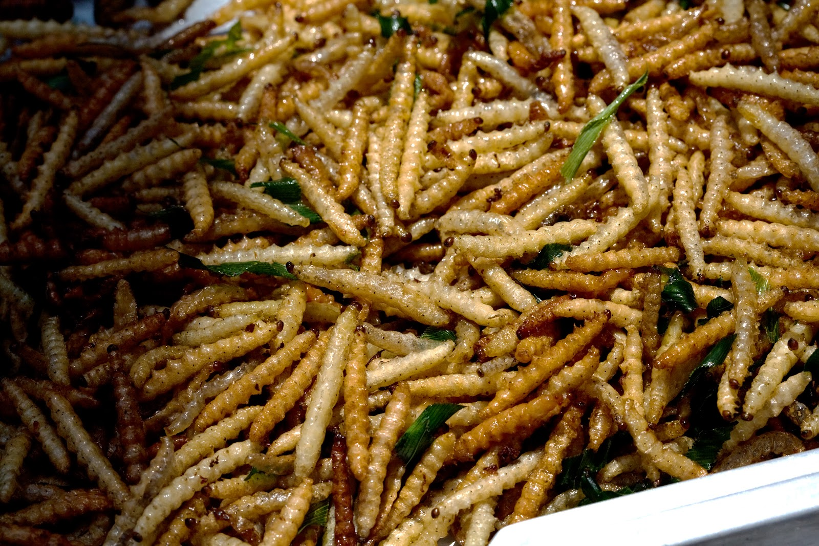 https://upload.wikimedia.org/wikipedia/commons/c/cb/Bamboo_worms_food.jpg