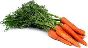 Bunch Nante Carrots Information and Facts