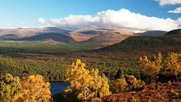 Image result for cairngorms national park