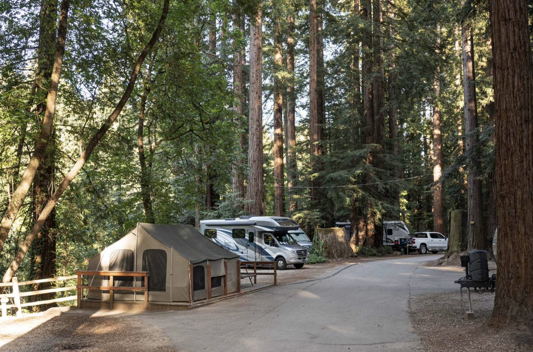 Tent and RVs parked amongst trees at Santa Cruz Campground