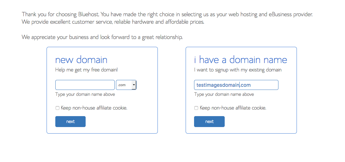 How To Start A Blog On BlueHost? Choose A Domain Name Make It Brandable