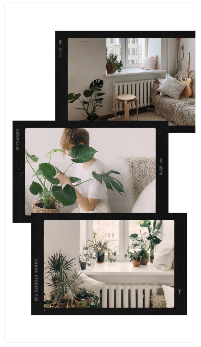 Canva Homestyle Instagram Stories Template