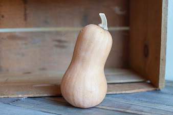 Photo of the share - Butternut Squash