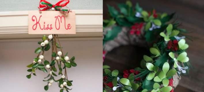 Το φυτό των Χριστουγέννων -Επτά πράγματα που δεν ξέρετε για το γκι [εικόνες]