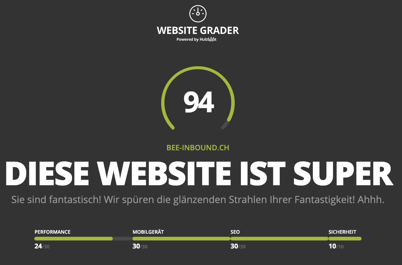 Gesamtüberblick Website Grader