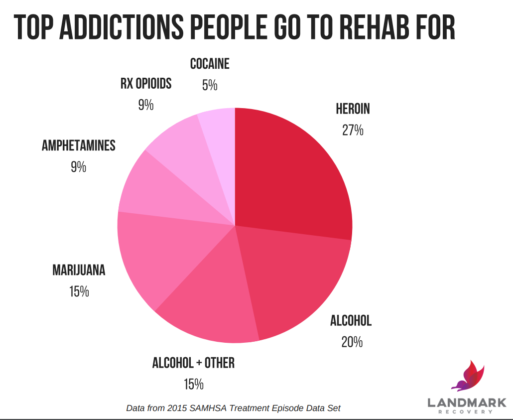A pie chart showing a visual breakdown of the top addictions people go to rehab for.